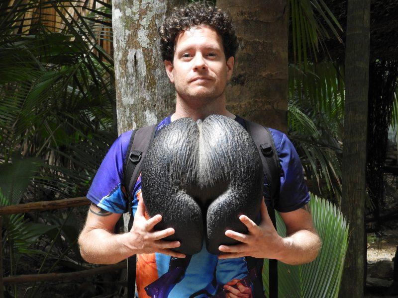 Seychellen: sexy fruit en beukende golven